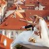 Свадебный фотограф в Праге Тимур Сулейманов