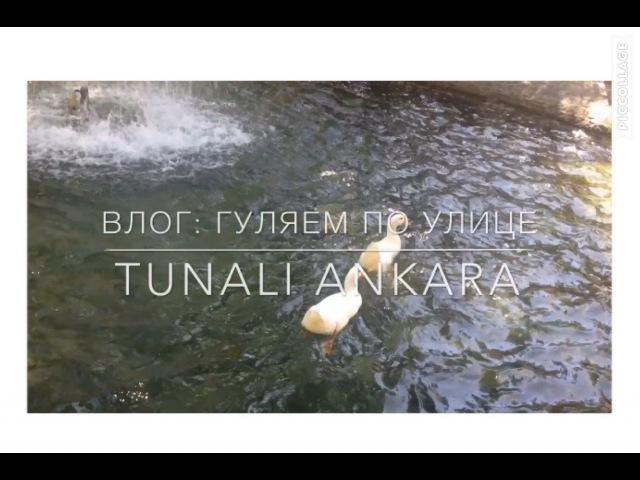 Влог Турция Анкара улица Тунали