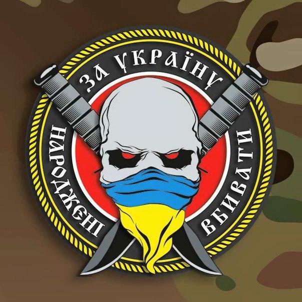 """Россияне были """"ошарашены"""", когда увидели такое сильное партизанское сопротивление на Донбассе, - Жемчугов - Цензор.НЕТ 6097"""