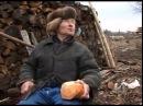 участник войны / Илья Афанасьевич Плотников