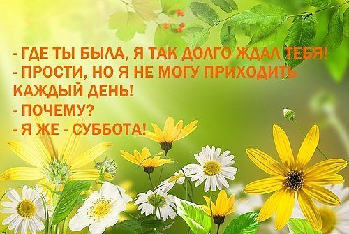 https://pp.userapi.com/c631924/v631924104/293bc/rMVIDndfi2M.jpg