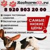 Zookorm Vo-Vladimire