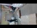 узбекский павлин гомосяк