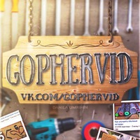 gophervid