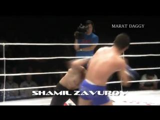 Дагестанские бойцы в ММА