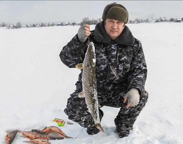 fishhungry для зимней рыбалки