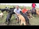 Reportero Aventurero: Territorio de Zaguates