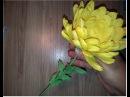 Хризантема Из гофрированной бумаги Chrysanthemum the flower of corrugated paper