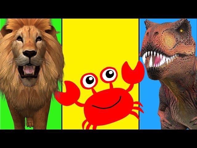 Dinosaur Cartoon Funny Short Movie | Lion Finger Family | Lion Vs Gorilla Wild Animal Fights
