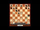 Дебютные катастрофы 6. Дебют Ларсена 1.b3, Атака Нимцовича-Ларсена (встроенные суб ...