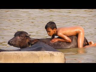 porno-v-vk-indiya