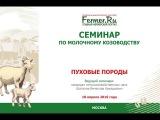 Пуховые породы коз.  Шаталов В.А. Кандидат с.-х. наук.