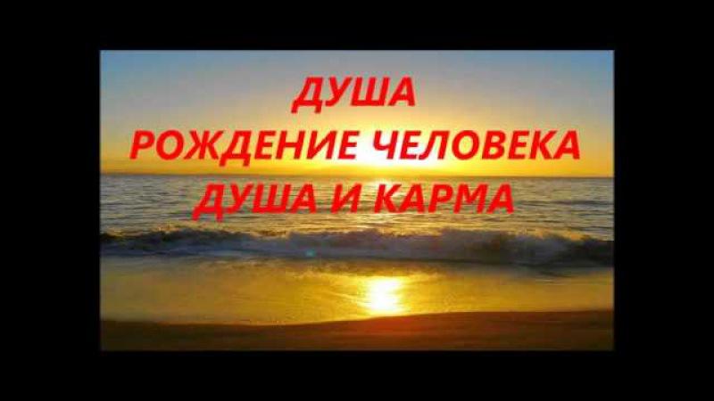 x_34c81b53.jpg