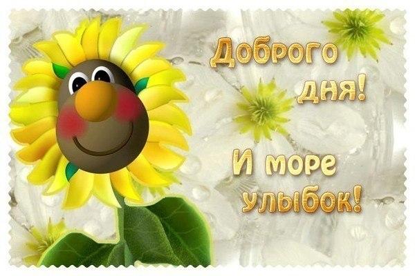 http://cs631929.vk.me/v631929000/1f80c/8PpFNwa0gVc.jpg
