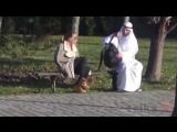 Прикол дня: Араб и сумка. И смех и грех :)