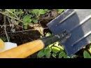 Самодельная Лопата Копателя, 2016, Homemade shovel digger