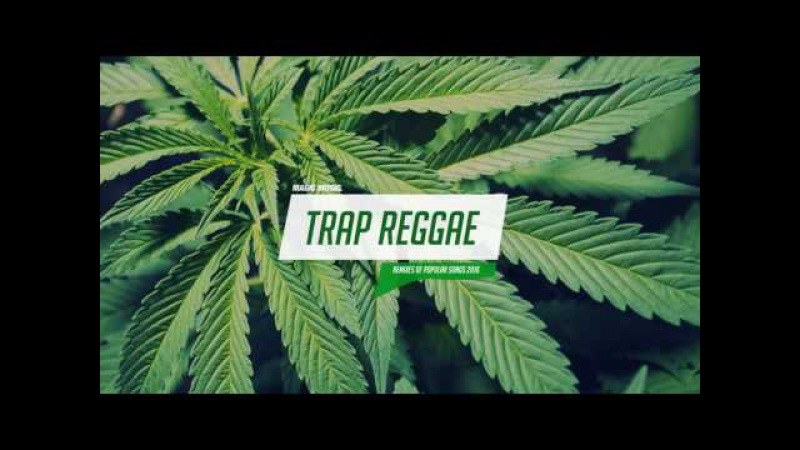 Best Trap Reggae Mix 2016 💊 Trap Bass Reggae Music 💊
