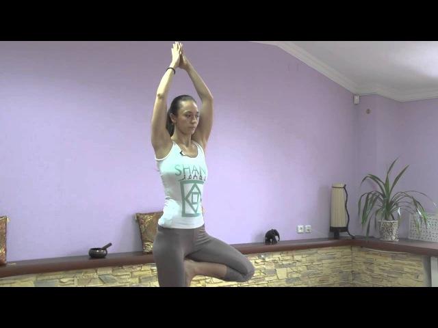 Йога для начинающих двенадцатое. занятие. Йога в Харькове