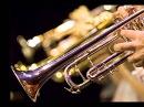 Торжественные фанфары 4 / Solemn ceremony fanfares - Composer V.Motsardo