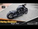 """Harley Davidson Night Rod umbau Special l""""Blaken 2016 Airride NLC VRod"""
