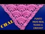 Punto a crochet PAVO REAL para Chales triangulares, en V o en punta paso a paso