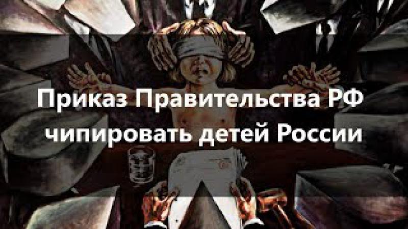 Приказ Правительства РФ чипировать детей России. Г. Царёва