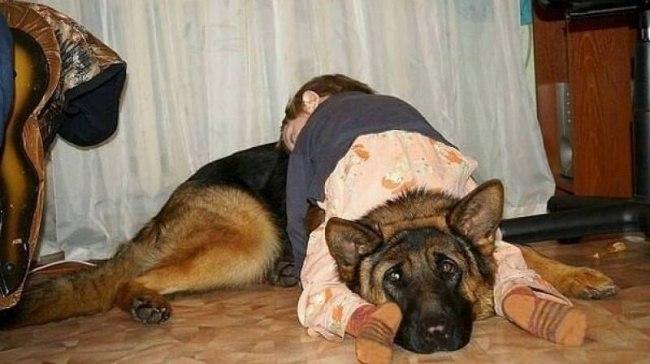 km HJUb3NSI - 20 Доказательств того, что ребенок может заснуть независимо от времени и места