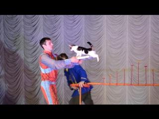 в цирке ЛиЛиПуТоВ и Зверей)-2