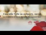 Пример (Лепестки роз) Видео поздравление на день рождения