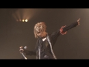 Acid Black Cherry - in the Mirror (TOUR 『2012』)