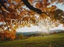 Nirvana dumb cover