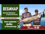 Вебинар Дмитрия Шабалина и Сергея Евтисова на тему