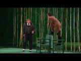 Волки и овцы (Действие второе)