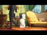 Тайная жизнь домашних животных (2016). Трейлер 2