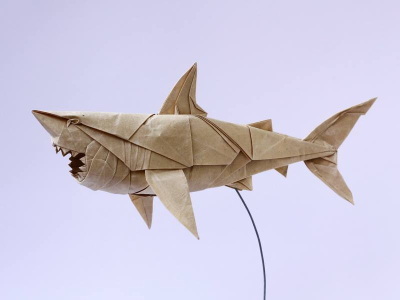 ZhDS2RjEoFg - Nguyen Hung Cuong - оригами-скульптор