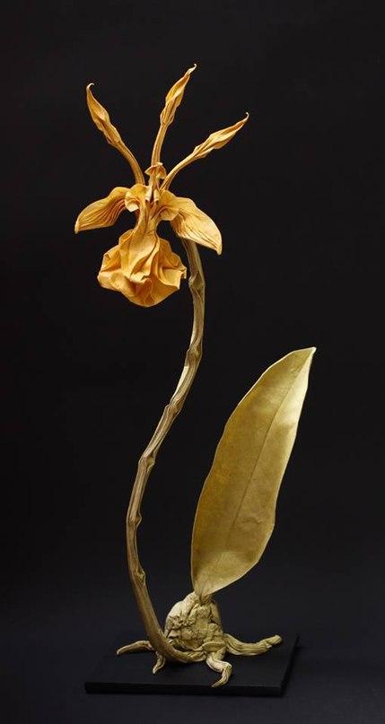 p1 LE5gXzjQ - Nguyen Hung Cuong - оригами-скульптор