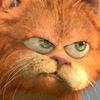 Кот Мотя. Антимышовая коалиция