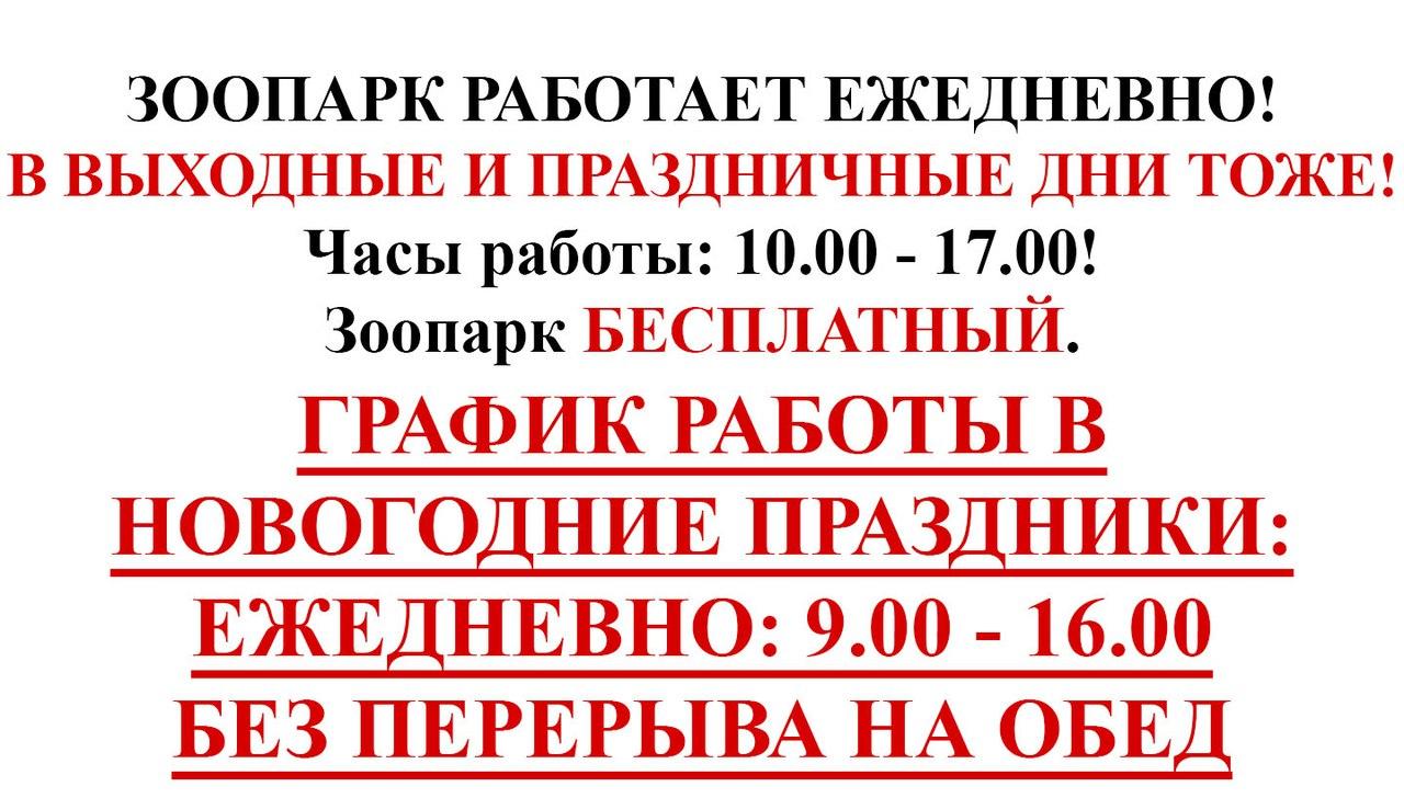https://pp.vk.me/c633117/v633117668/49cd/bG8O0nrXbHo.jpg