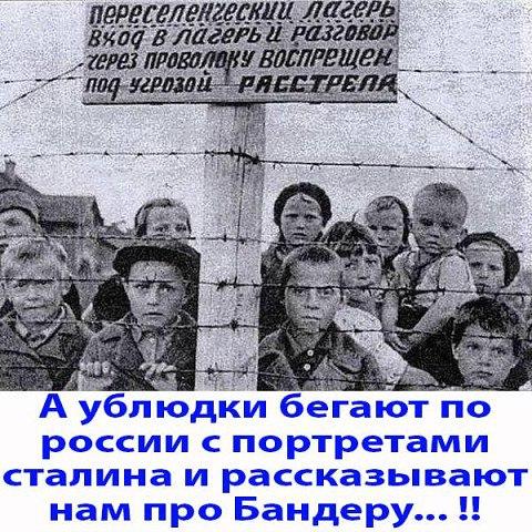 """""""За верховного главнокомандующего!"""" - в этом сталинском тосте сердечность и искренность"""", - сторонник оккупантов из Севастополя задал вопрос Путину и попросил вернуть кортик - Цензор.НЕТ 6841"""