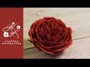 Коновалова Надежда_Как сделать пионовидную розу розу Девида Остина из фоамирана подробный мастер