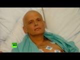 Спустя 10 лет расследований в деле о смерти Литвиненко больше вопросов, чем ответов
