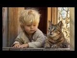 КОТЫ АРИСТОКРАТЫ в расслабоне. Смешные коты позируют как люди.