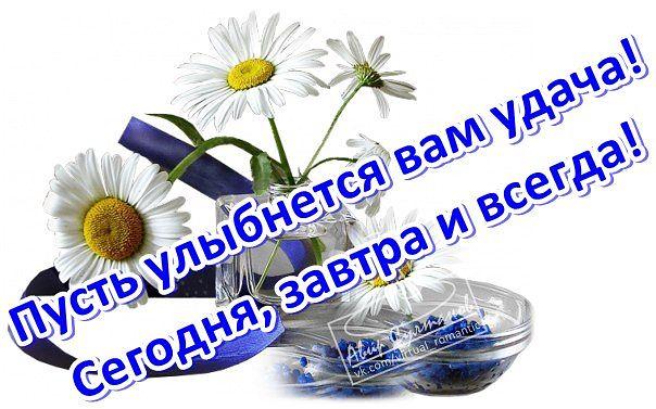https://pp.vk.me/c633118/v633118342/259bf/v7nMfI2HpXA.jpg