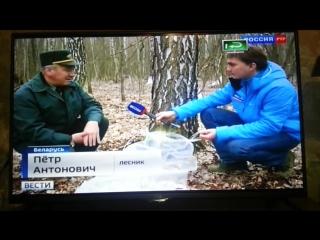 Вести Россия-РТР Заготовка березового сока Капличи