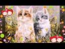 Слайд-шоу про котят!