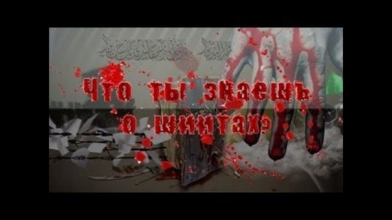 Женщины на прокат по-шиитски. Отрывок из лекции Мус'ад Анвар - что ты знаешь о шии...