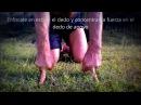 Blindaje Prehabilitación Articular Extensiones de dedos