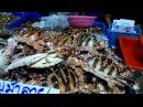 Тайланд Северная Паттайя Рынок морепродуктов в районе Наклуа