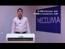 Выбираем хороший кондиционер - Neoclima Lux Invertor!