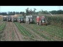 Biogas con CLAAS - Parte Prima
